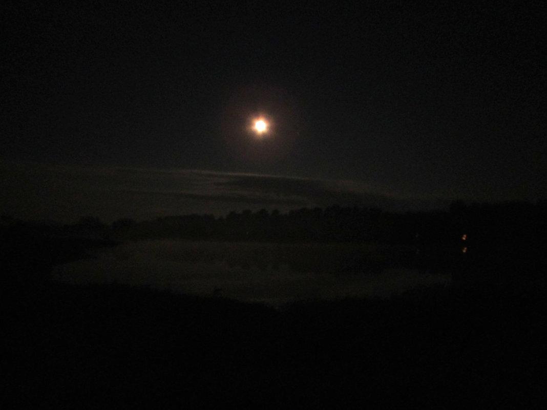 Полнолуние и туман - Светлана