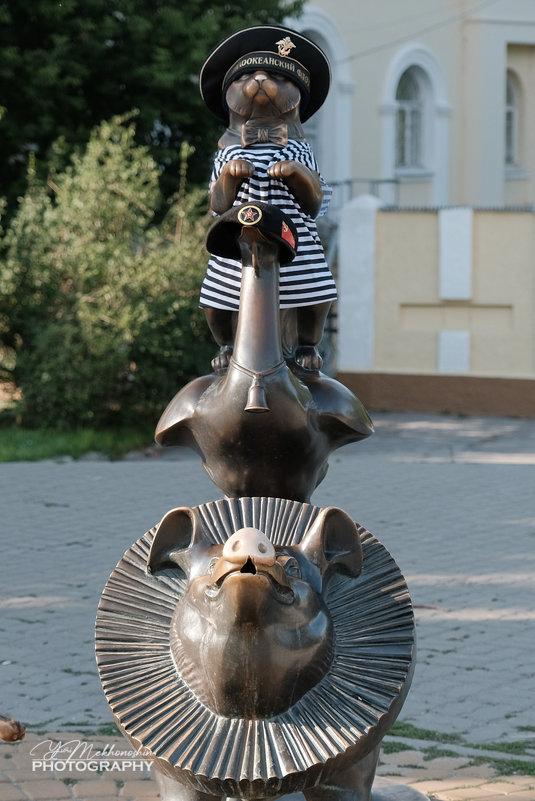 Гусь свинье не товарищ! - Yuri Mekhonoshin