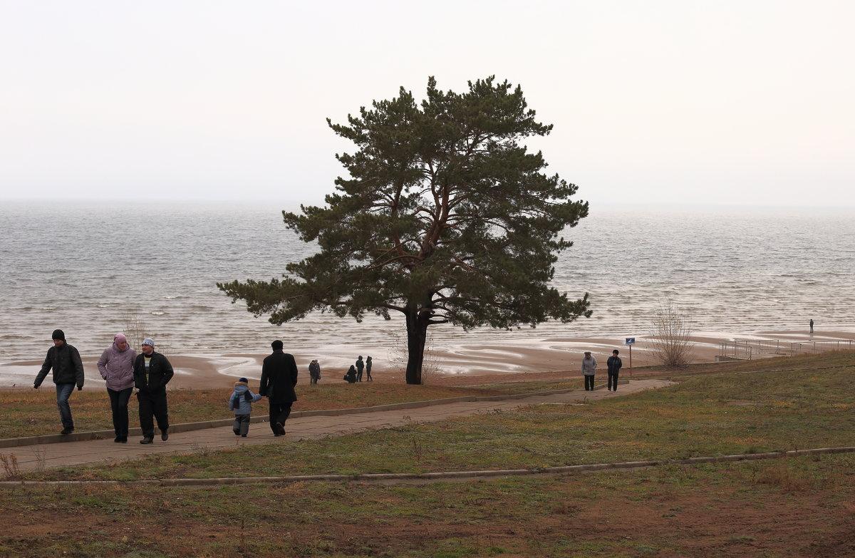 Ранняя осень - Andrey