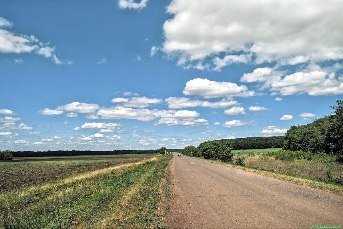 Если вы не материтесь за рулем, значит вы совсем не следите за дорогой :) - Андрей Заломленков