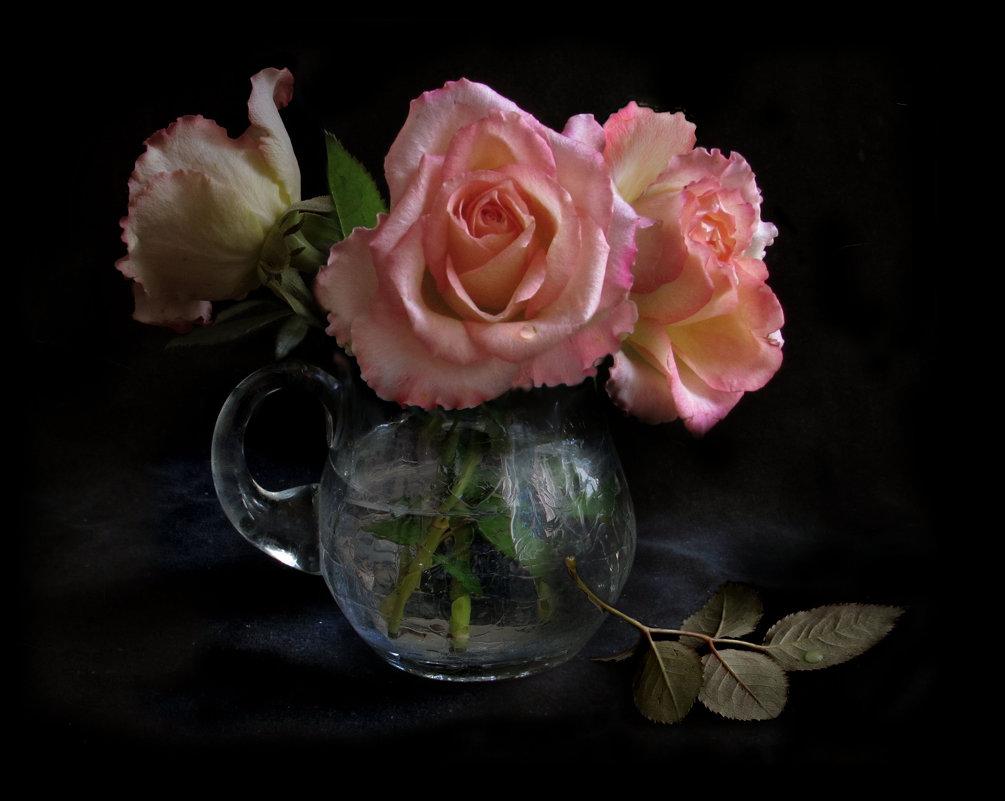 Три розы. - Nata