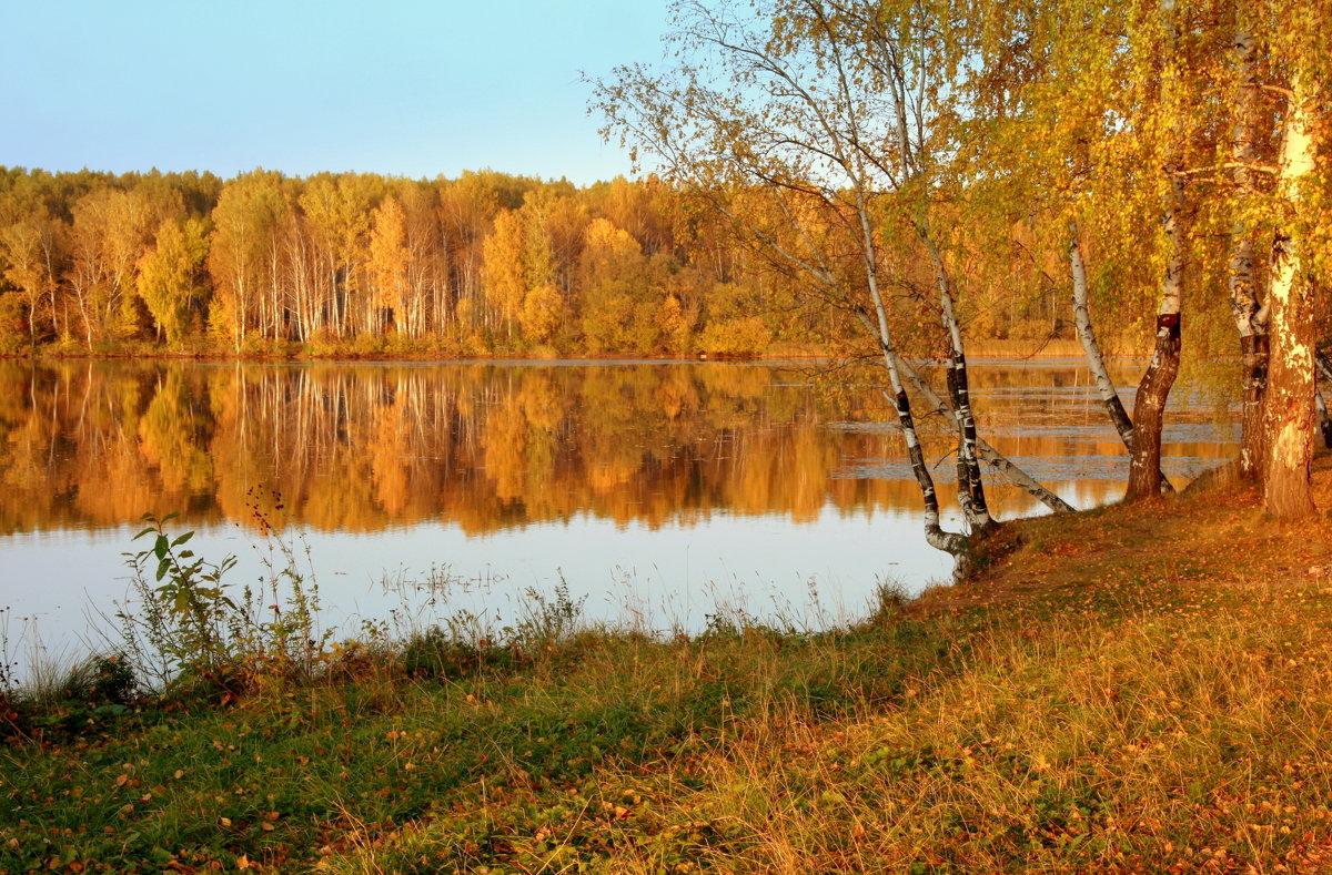 Рисует осень солнечным лучом... - Нэля Лысенко