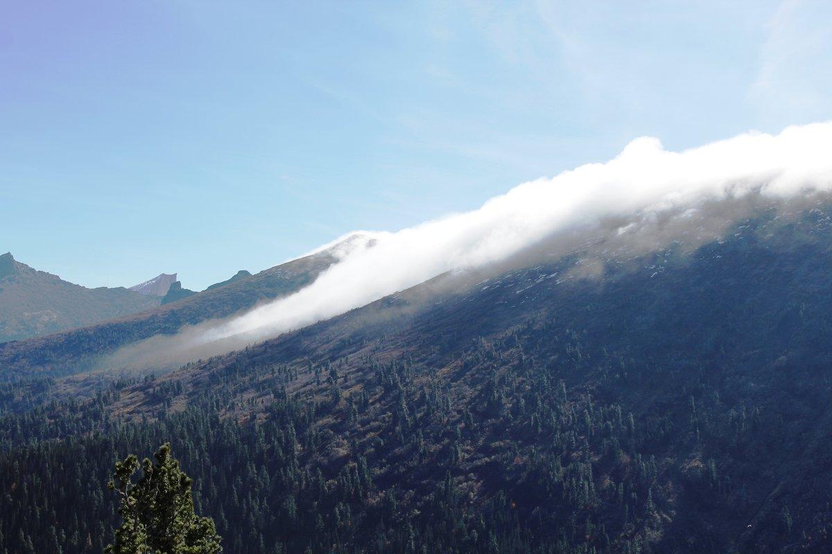 Туман в горах - Ольга Иргит