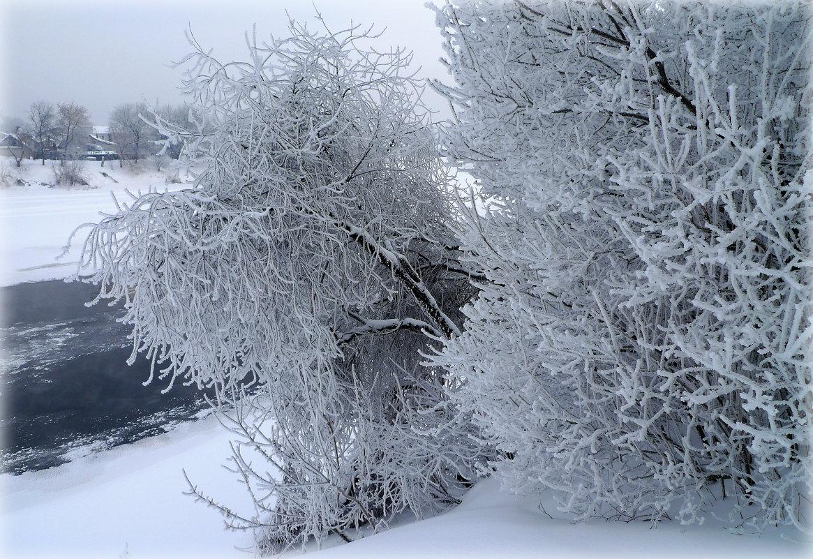 Зимние прически - Alika Demi
