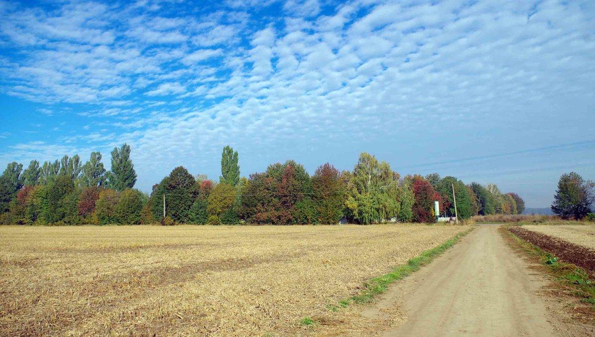 осень-3 - юрий иванов