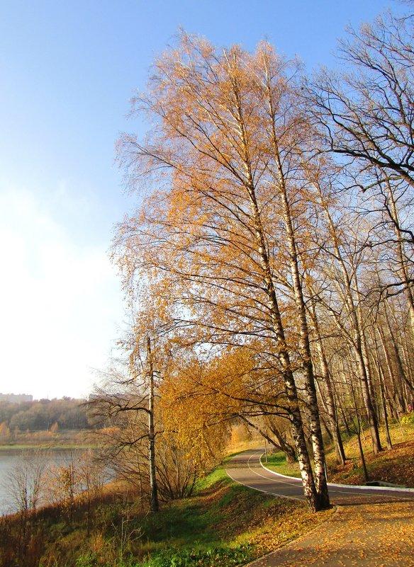 Осень в парке - Андрей Снегерёв