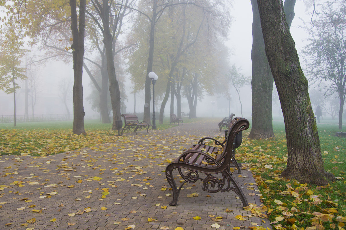Утро в тёплом ноябре - Александр Крупский