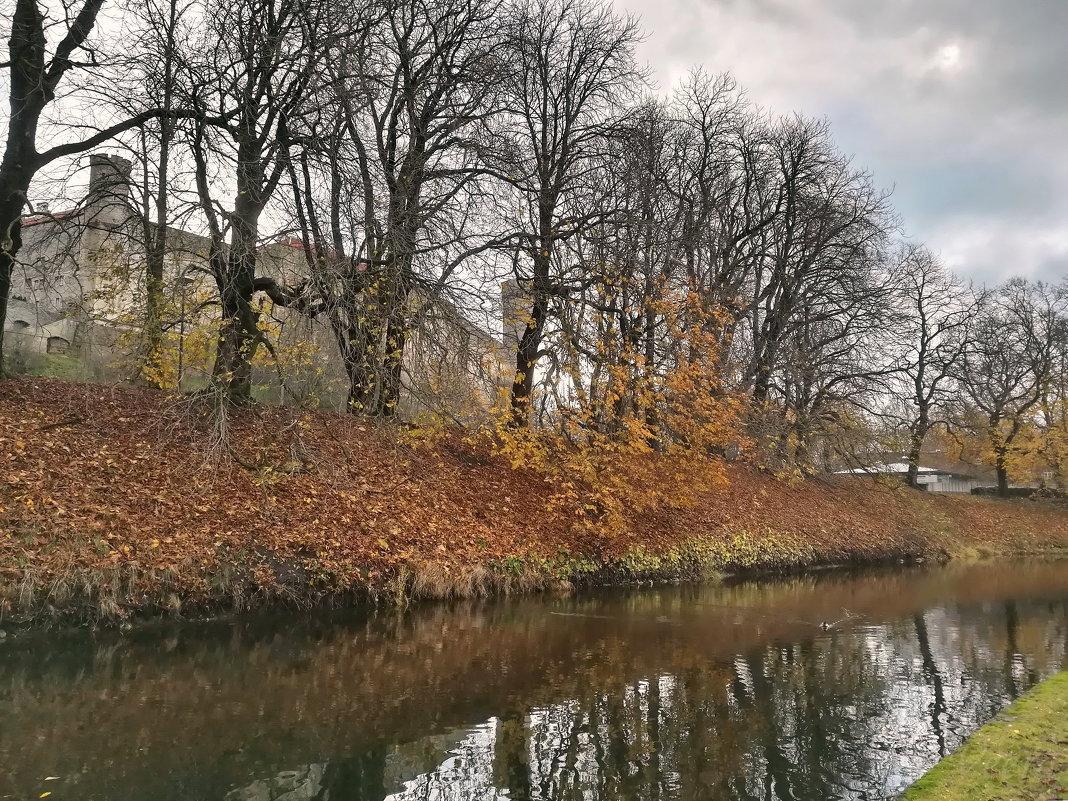 У пруда в осенний серый день - veera (veerra)