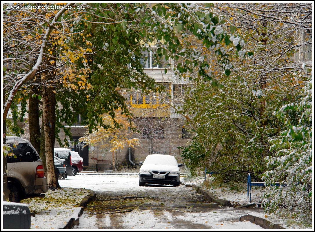 Первый снег... - ИгорьОк Бородин