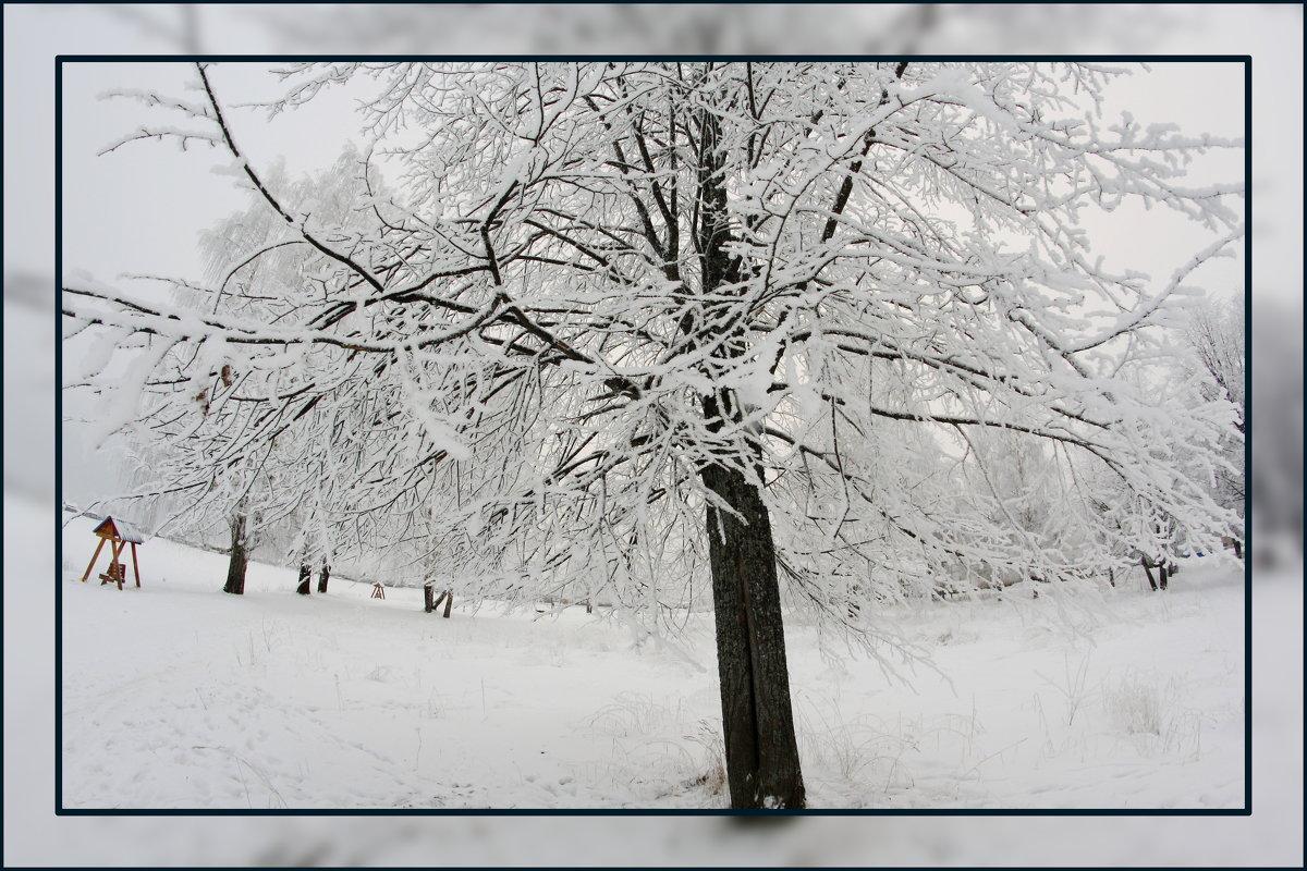 Грустная зима.... - Александр Широнин
