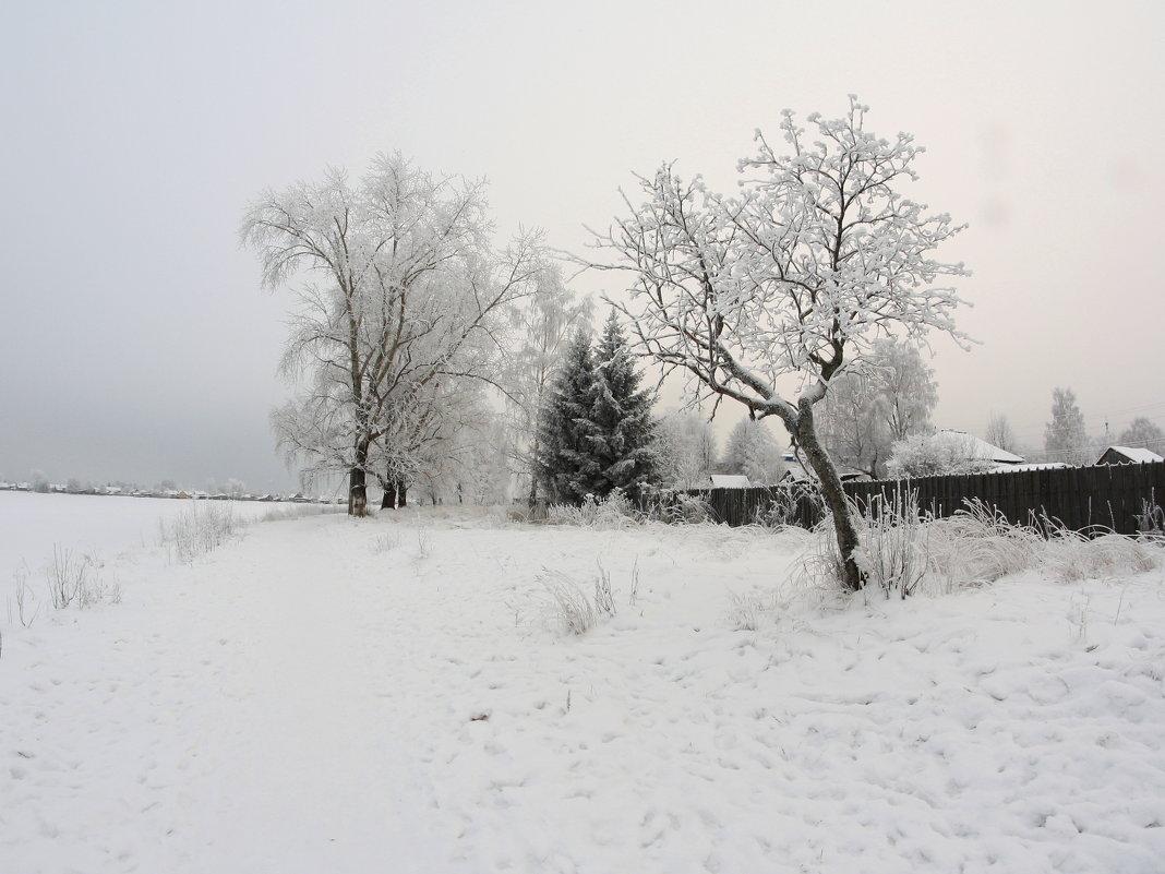 На берегу...Зима... - Александр Широнин
