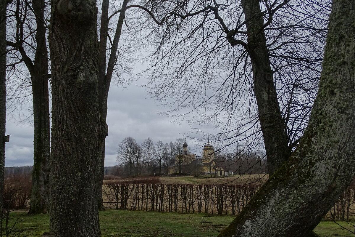 между деревьями - Sabina
