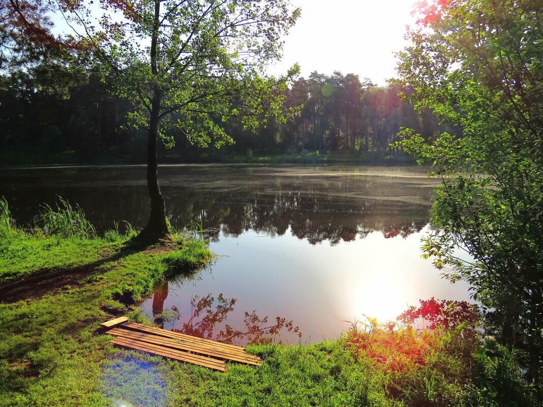 Утро на берегу озера - Андрей Снегерёв