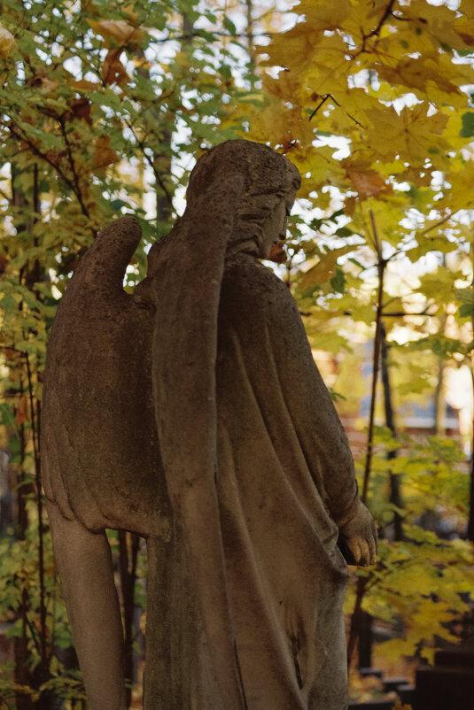 Осенний вечер Введенского Некрополя - Andrew Barkhatov
