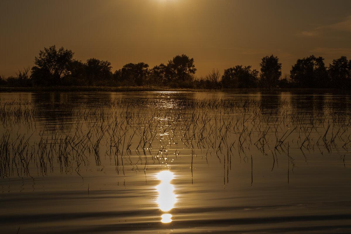 Астраханский паводок - Марина