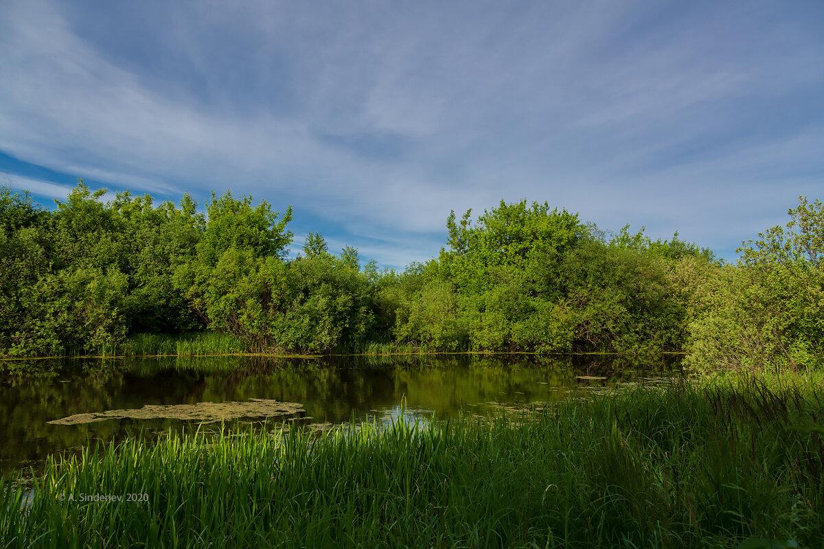 Пейзаж с озером - Александр Синдерёв