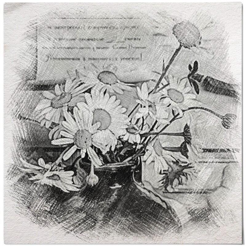 О, праздник природы – цветы полевые.......... - Tatiana Markova