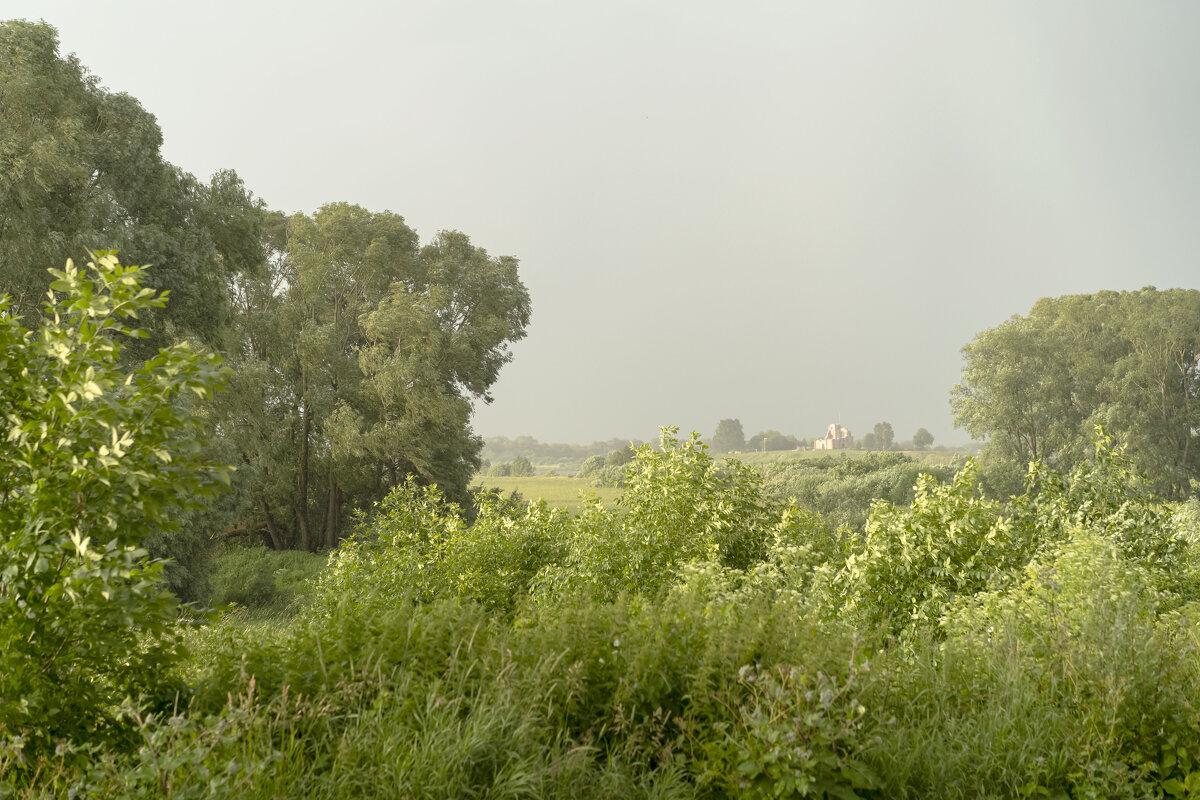Дождь и ветер - Арина