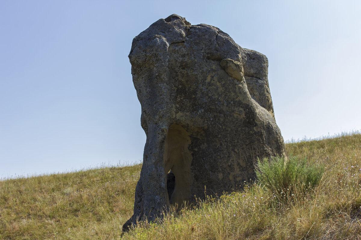 Каменный слон - АНДРЕЙ ШЕВЧЕНКО