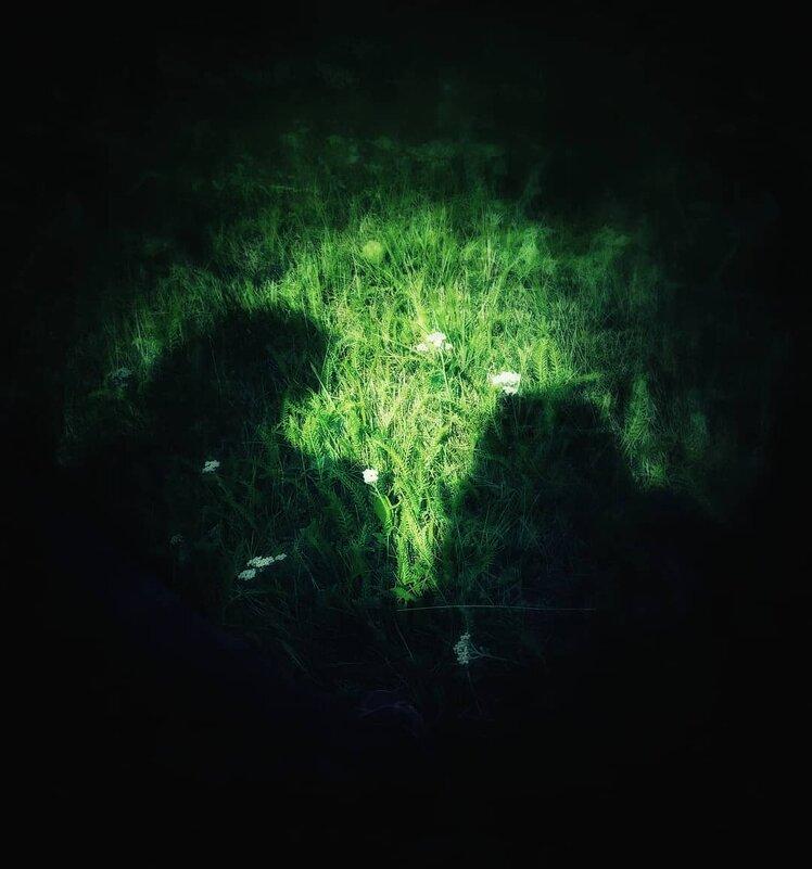 Shadows - Елена Елена