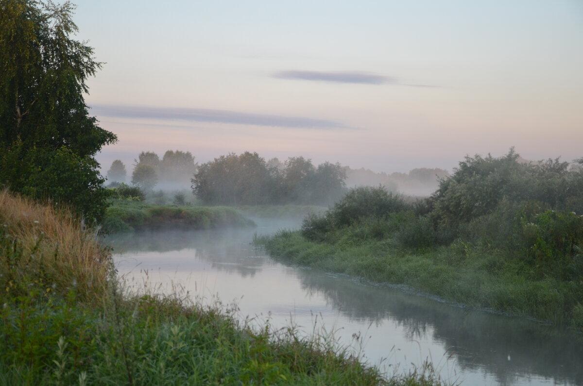 Туманное утро - demyanikita