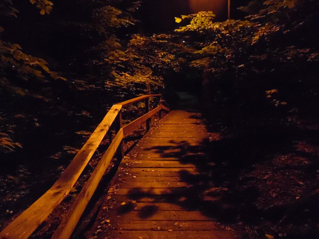 Мост в Воробьёвию - Андрей Солан