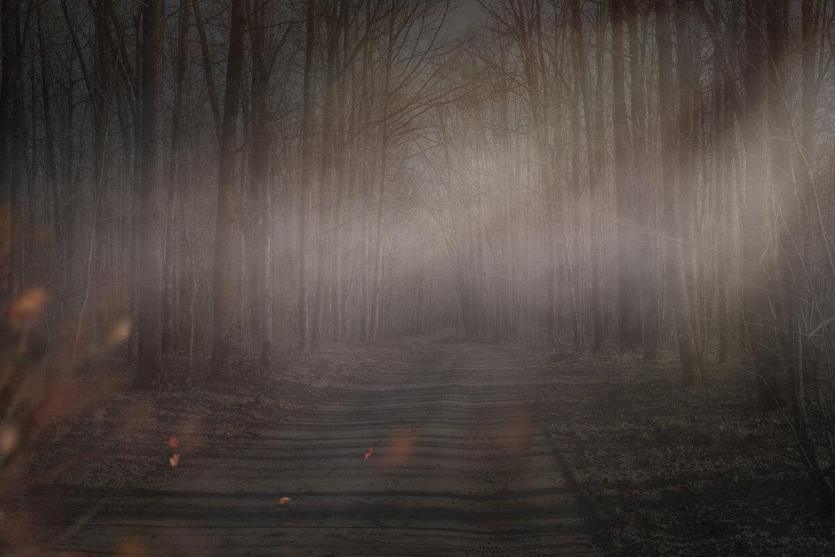 туман - nicnicos