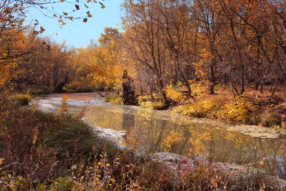 Осенняя тишина - Ирина