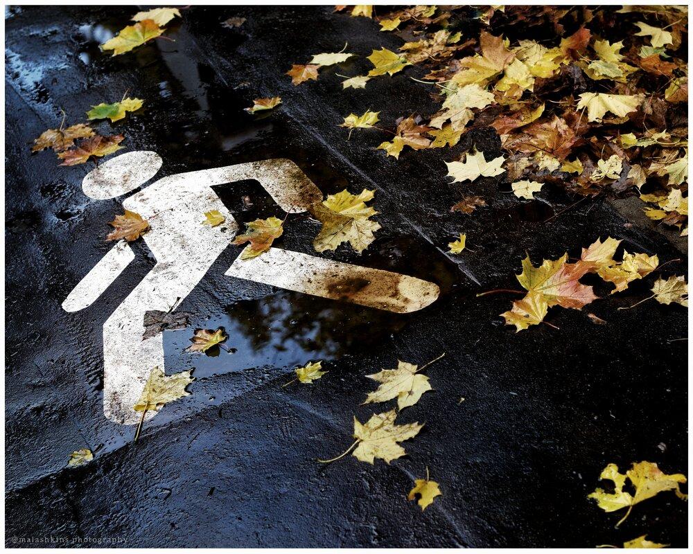 Осенняя - Сергей Малашкин