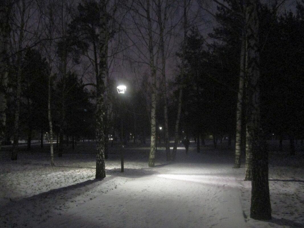 Вечером в парке - Ольга Довженко
