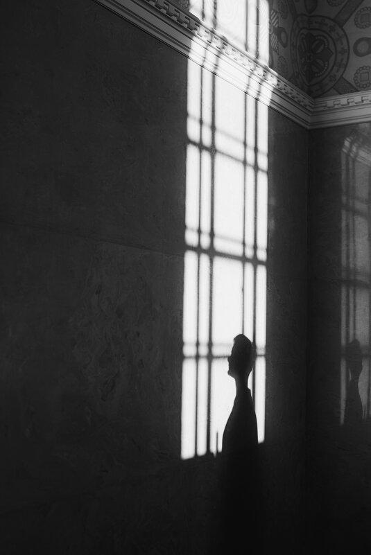 Тень, которая гуляет сама по себе - Мария Буданова