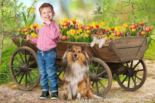 Цветы для мамочки! - adika