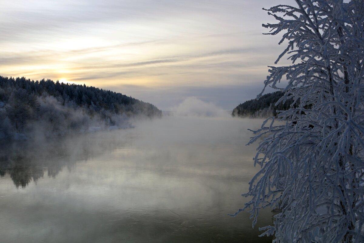 Морозный день - Ольга