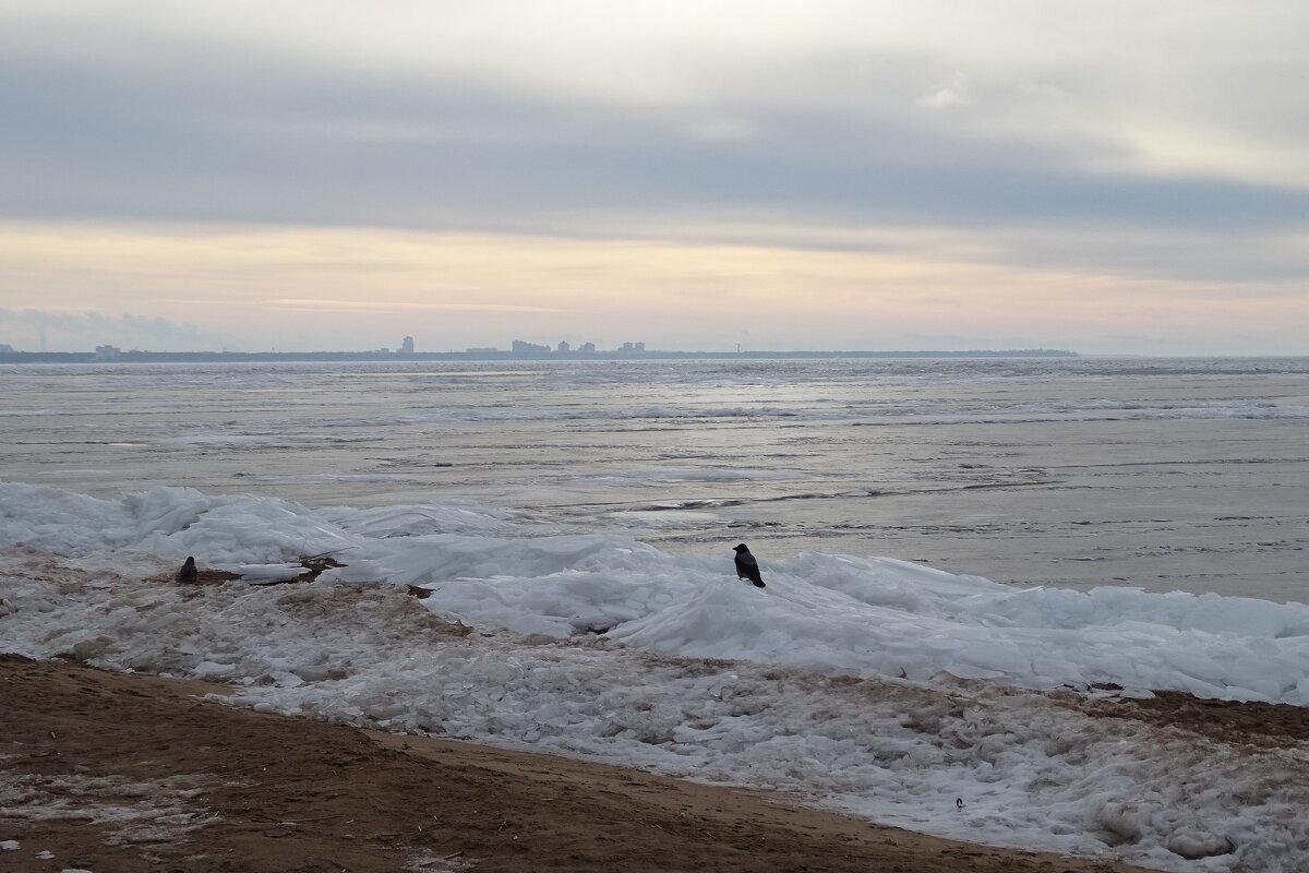 на берегу финского залива (а я тебя вижу, куда ты спряталась?) - Anna-Sabina Anna-Sabina