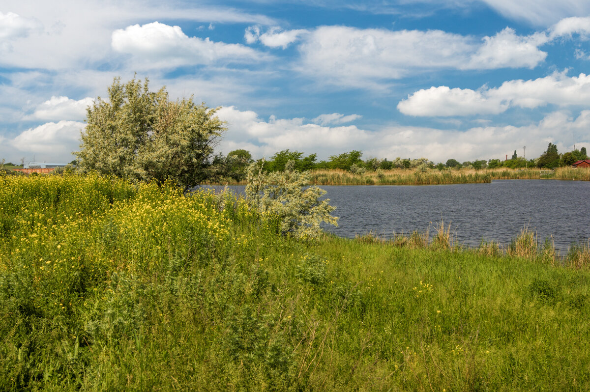 Озеро - Игорь Сикорский