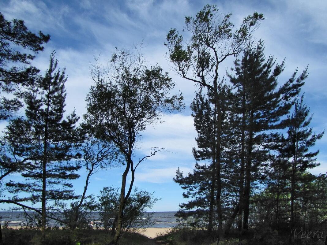 У Финского залива - veera (veerra)