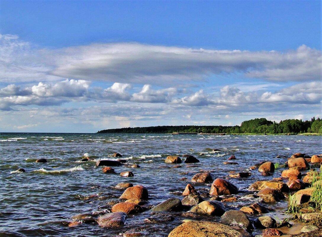 Каменистый берег  Балтики - Aida10
