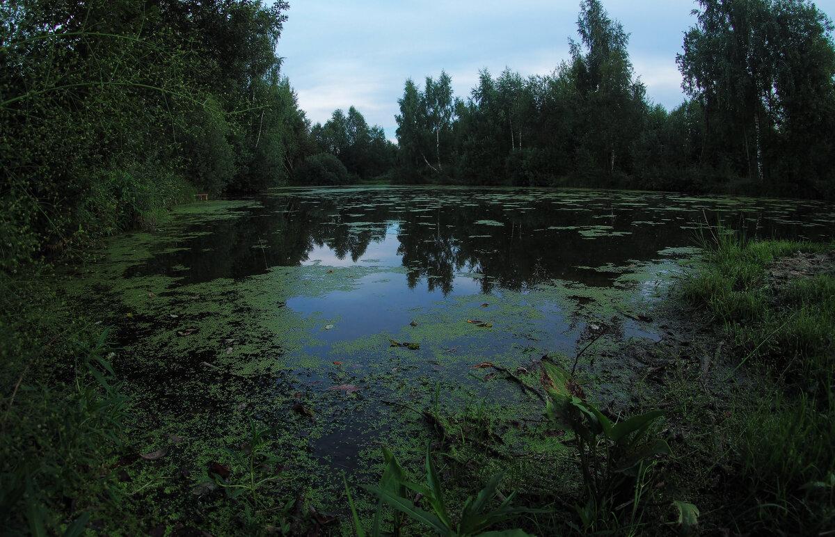 У Тихой Воды - юрий поляков