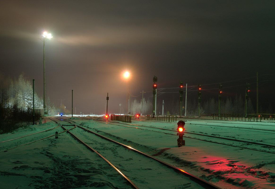 Где-то на белом свете, там где всегда мороз.... - Алексей Некрасов