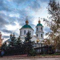 Омск :: Vasilich buratino