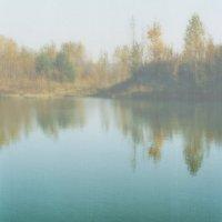 Утро у лесного озера. :: Валерий Молоток