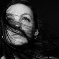 Ветер перемен :: Таша Свиркина