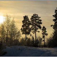 Видишь, солнце встаёт! :: Василий Хорошев
