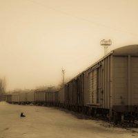 На станции товарной :: Yuriy Puzhalin
