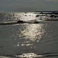 Залив :: Jonni Lee