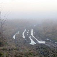Туман :: Константин П