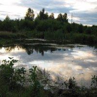 Красота русской природы. :: Виктория Чурилова