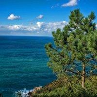 Бискайский залив :: Ольга Маркова