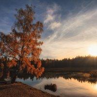 Осень в Монрепо /1 :: Евгений Плетнев