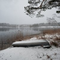 А снег идет... :: Евгений Плетнев